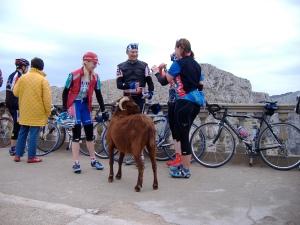 road bikes at Cap de Formentor