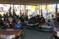 Bumper cars, Carp Fair.