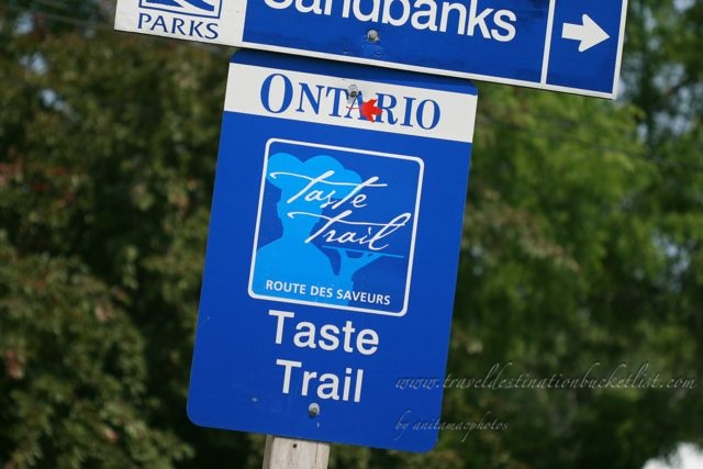 wine and food in Prince Edward County