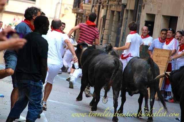 Spanish Culture, fiesta in Viana