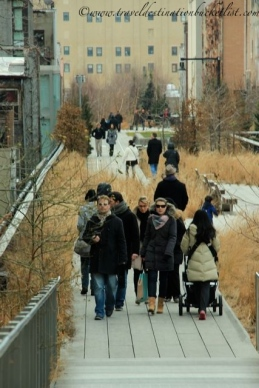 winter on the High Line