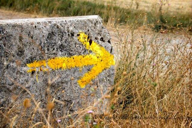 route markers on the Camino de Santiago