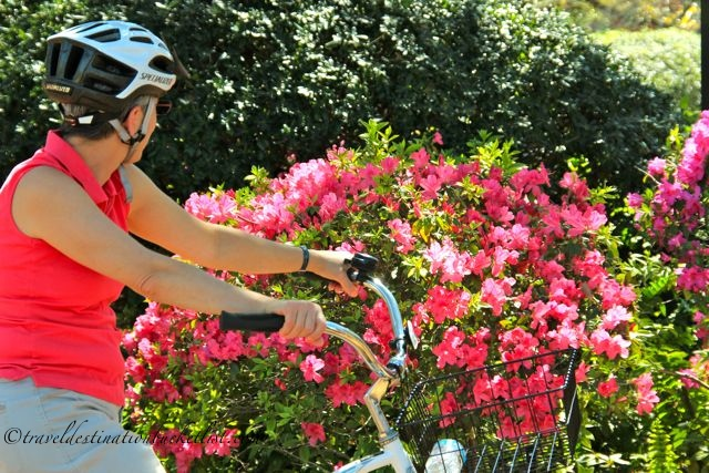 Cycling with French Quarter Bicycle Tours, New Orleans