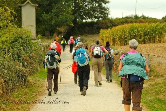 Pilgrims walking to Santiago de Compostela