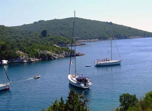 Lola-Croatia